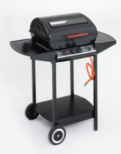 Landmann 12375 Gas Wagon 2 Burner BBQ